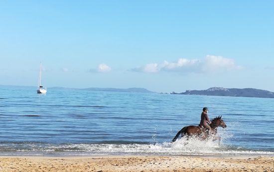 Chevaux & Voilier sur plage de Giens